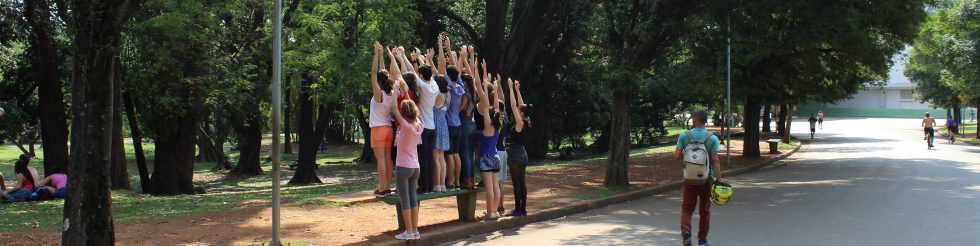 Proteção (Protection in Ibirapuera)